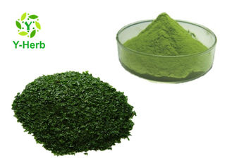 Food Grade Vegetable Extract Powder Natural Ground Nori Flavor Taste Seaweed Powder