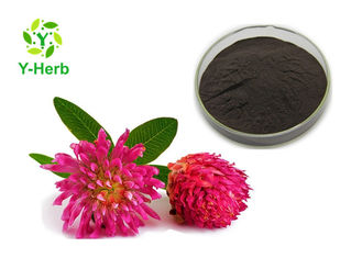 Trifolium Pratense Flower 2.5% 8% 20% 40% Red Clover Extract Powder Isoflavones